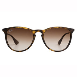 Ray-Ban Erika Sunglasses - Polarized
