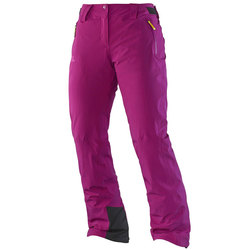 Salomon Iceglory Pants - Women's