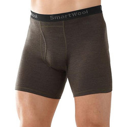 Smartwool Micro 150 Pattern Boxer Briefs