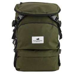 Alpine Division Timberline Pack
