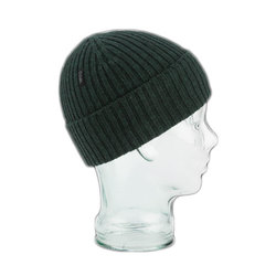 Coal The Emerson Beanie