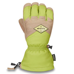 Dakine Team Excursion GORE-TEX Glove