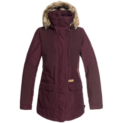 DC Panoramic Snow Jacket - Women's
