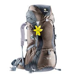 Deuter Women's Backpacks