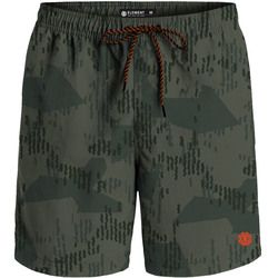 Element Arrowrock Shorts
