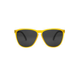 Electric Encelia Sunglasses