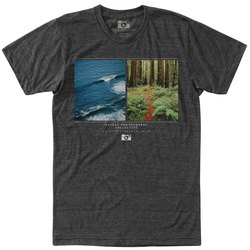 HippyTree Ratio Tee Shirt - Men's