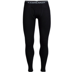 Icebreaker Tech Leggings W Fly