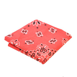 Liberty Mountain Bandana