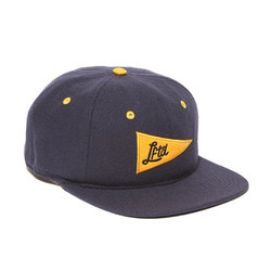 LRG Lifted Pennant Strap Back