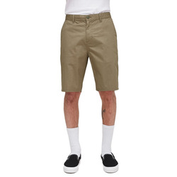 Obey Straggler Light Short