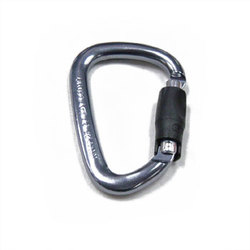 Petzl Charlet William Ball Lock Carabiner