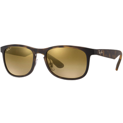Ray Ban RB4263 Chromance Sunglasses