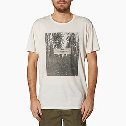 Reef Palmstruck S/S Tee - Men's
