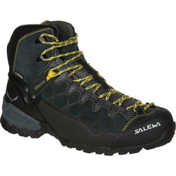 Salewa Alpine Trainer Mid GTX Boot - Mens