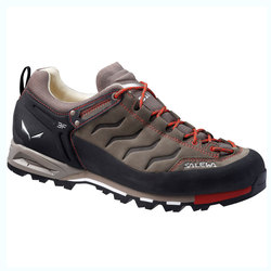 Salewa Mountain Trainer L Hiking Shoes