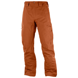 Salomon QST Snow Pants - Men's