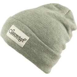 Spacecraft Lark Beanie