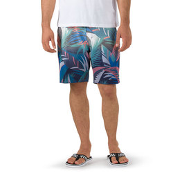 Vans Dip Dye Boardshort - Men's